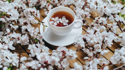 Elderflower Cherry blossom tea Genepi flavour